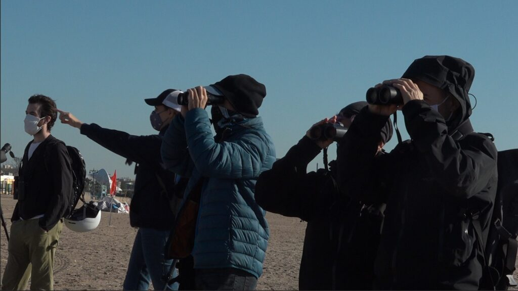 a group of birders